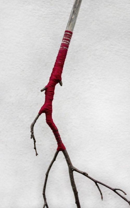 """""""Un solo fiore al mondo-dettaglio"""", copyright Ilaria Margutti"""