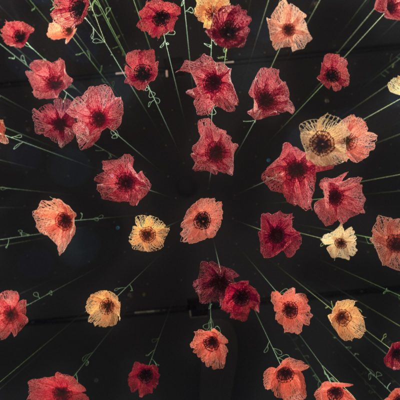 """Poppies"", 2018 – Ongoing, 12' x 40"" x 30"", Thread, Machine Embroidery, Gallery Stratford, Stratford, Ontario, Photo Cheryl Rondeau, copyright Amanda McCavour"
