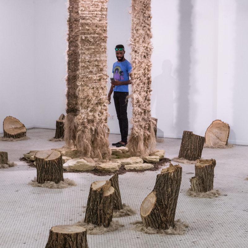 """Hempen Reforestation"", Vulpes Bastille Gallery, Kansas City, MO, 2017, photo Aaron Paden, copyright Neil Goss"