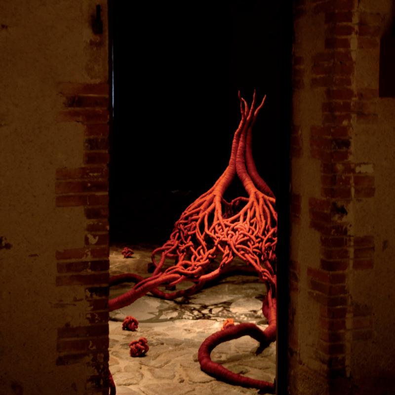 """""""Fibrescences"""", 2007, Textile Museum Cholet, copyright Aude Franjou"""