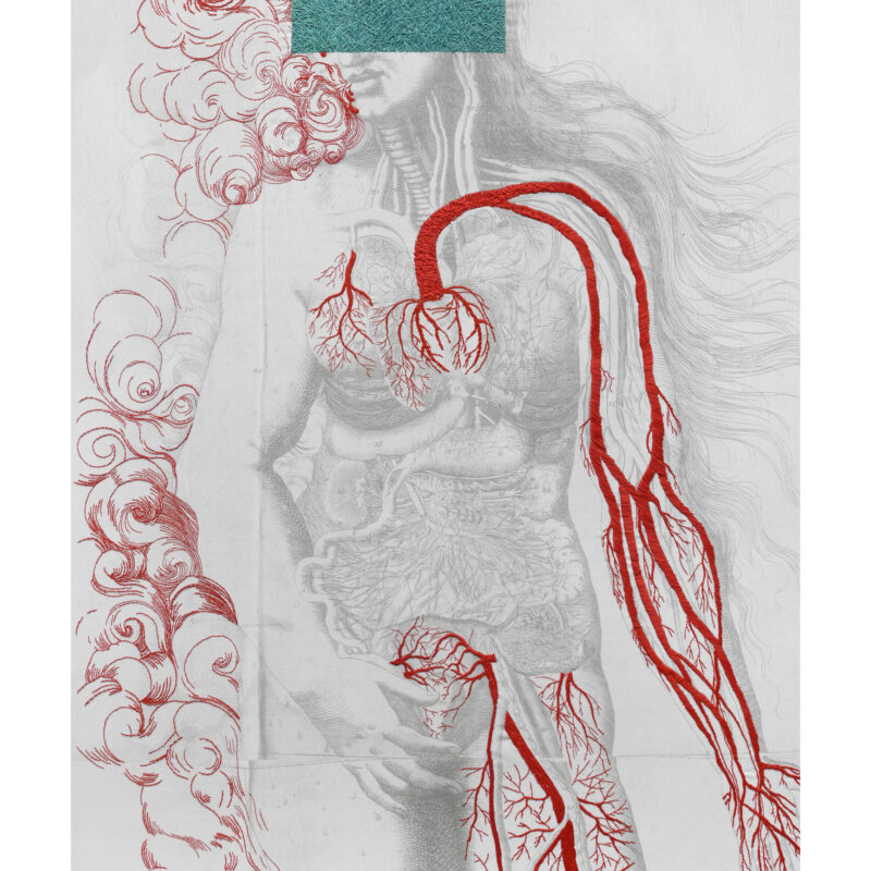 """Venus"", 2015, 130x83 cm, copyright Ana Seggiaro"