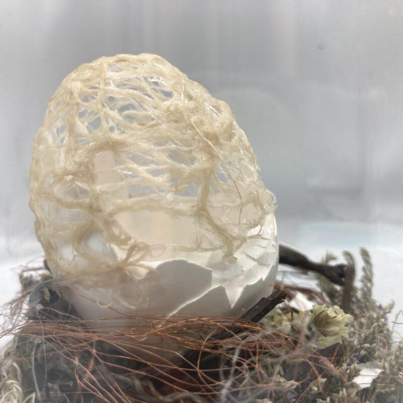 """Davide Viggiano """"INNESTO"""" assemblaggio di fibre vegetali, legno, fili di rame, sintetici, guscio d'uovo in capsula, cm 11x19x11, 2020"""