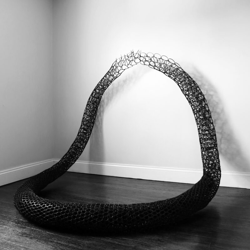 """Sui Park, """"Flow"""", Natural Essence—Motion Perceived, Morris Museum, Morristown, USA, curated by Michele Marinelli, ph.courtesy Morris Museum"""