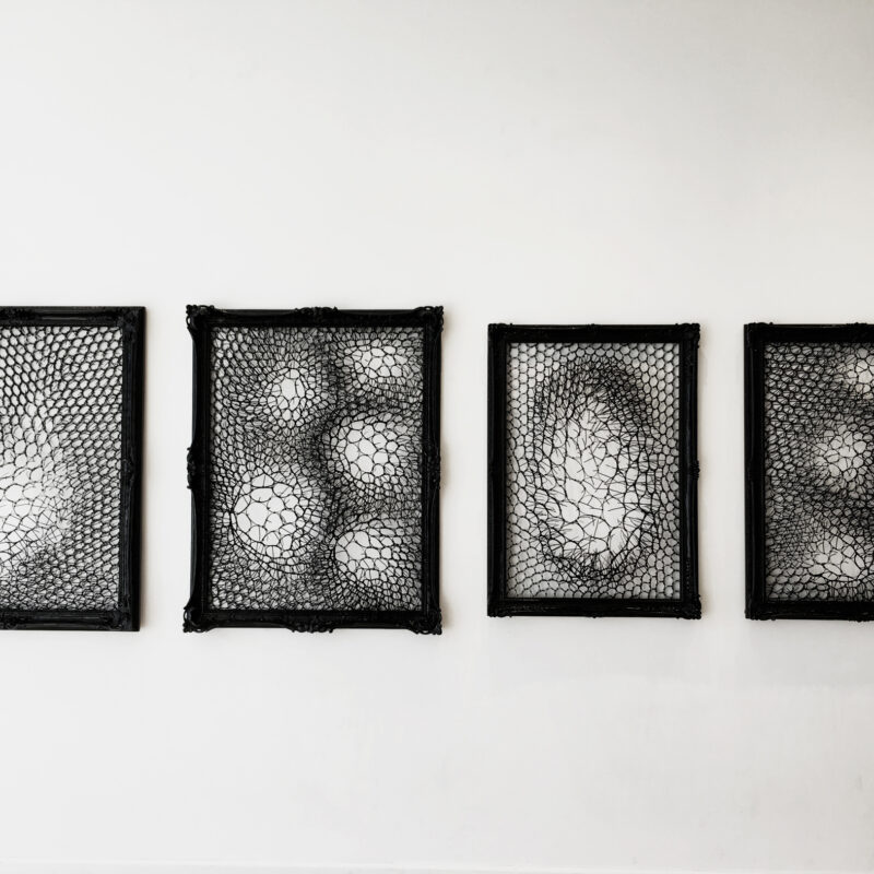 Portrait, 2016, 36 x 48 inches x 4 pieces, Black Cable Ties, Vintage Frames, Nails, Rings