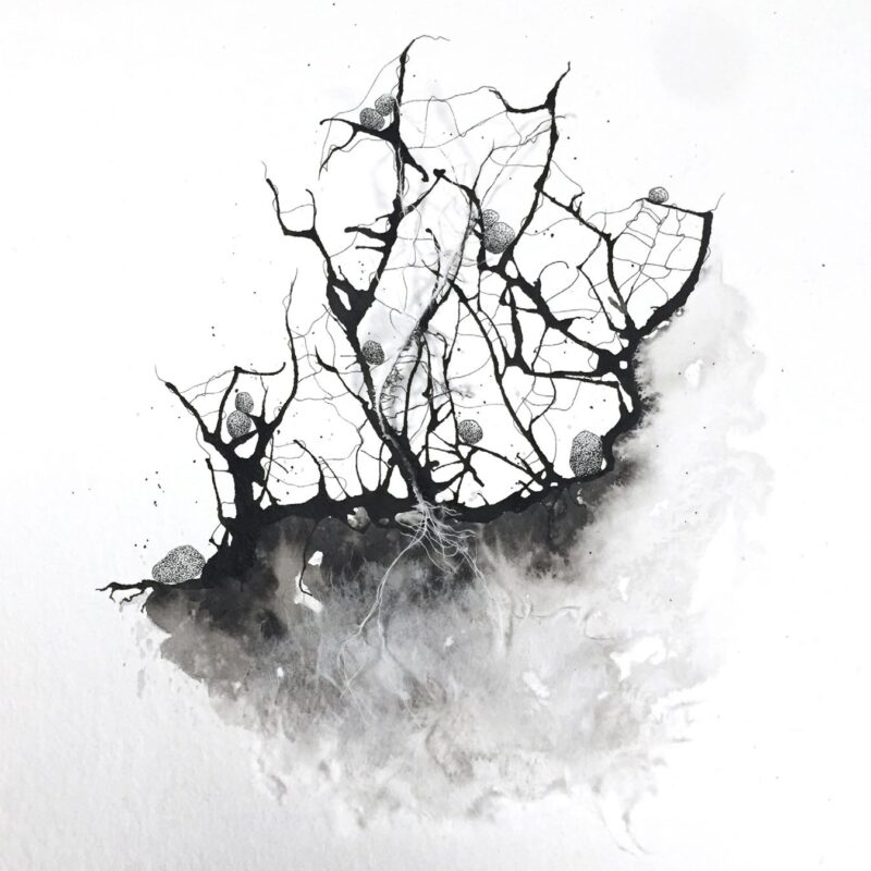Rhizomes, 2021 - Frédérique Gourdon